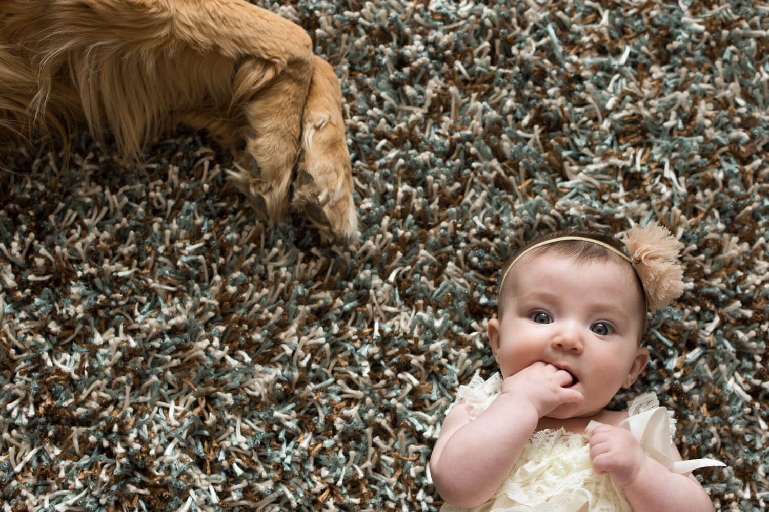 Portrait of a young baby laying on the carpet with the family dog laying close by