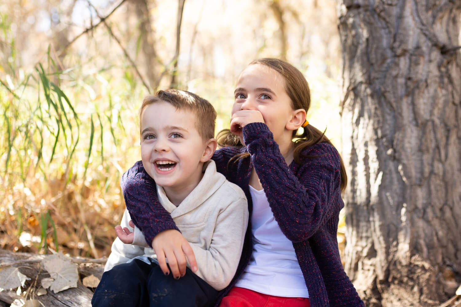 Portrait of a brother & sister sitting side by side on a log, looking away from the camera and laughing